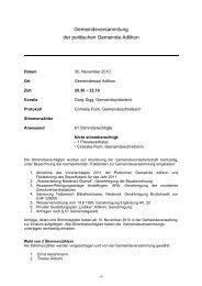 Protokoll Gemeindeversammlung November 2010