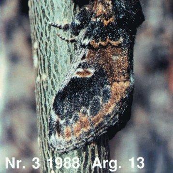Insekt-Nytt nr. 3 - Norsk entomologisk forening