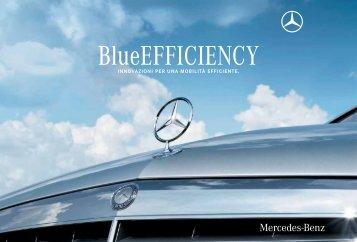 Scarica la brochure di Blue Efficiency