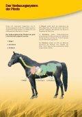 Pferd Praxisratgeber - Seite 3