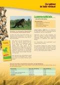 Pferd Praxisratgeber - Seite 6