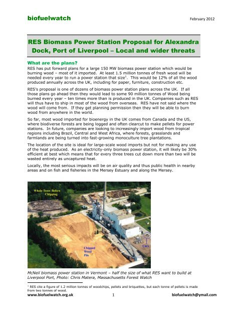 biofuelwatch RES Biomass Power Station Proposal for