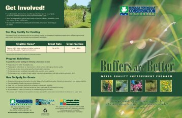 Buffer Brochure - Niagara Peninsula Conservation Authority