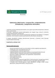 Tájékoztató az MLSZ részére – Csoportos Élet-, és ... - Borsodfoci.hu