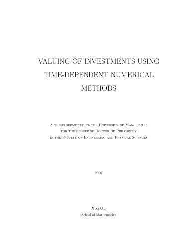 valuing of investments using time-dependent numerical methods