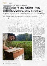 Bienen und Milben – eine höchst komplexe Beziehung