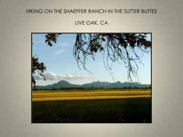 HIKING ON THE SHAEFFER RANCH IN THE SUTTER BUTTES