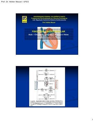 2009 CIRCULACAO [Modo de Compatibilidade] - Lab Regulação ...