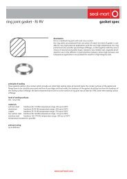 gasket spec ring joint gasket - RJ RV - seal-mart