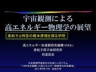 宇宙観測による素粒子物理の展望 - 東京大学素粒子物理国際研究センター