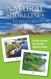 Natural Shorelines for Inland Lakes - Michigan Sea Grant
