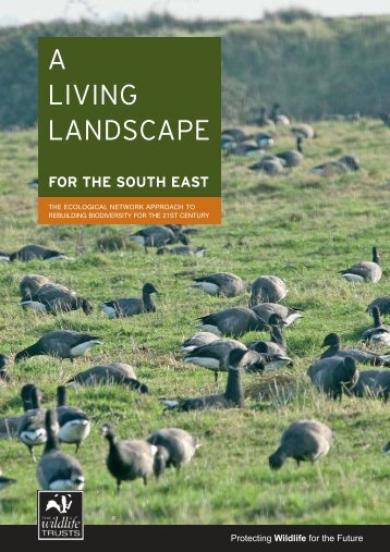 A Living Landscape for the South East - Kent Wildlife Trust