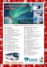 2013 Holiday season operation - Reykjavik Excursions