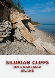 SILURIAN CLIFFS