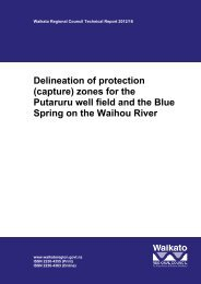 Delineation of protection (capture) zones for the Putaruru well field ...