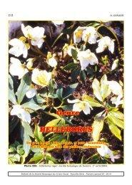 Thymus Vulgaris Semences Suffolk Herbes Jardin Graines Pack de THYM