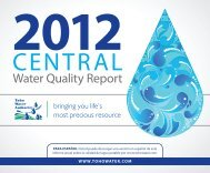 Central Report - Toho Water Authority