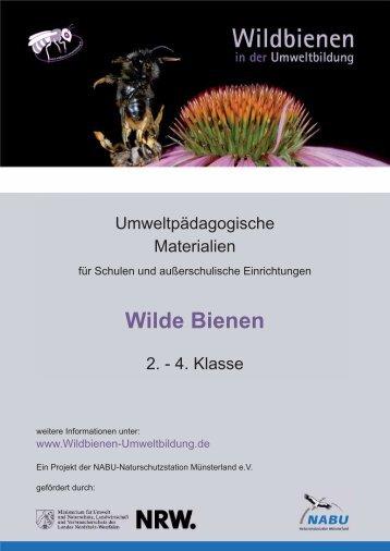 Wilde Bienen - Wildbienen in der Umweltbildung
