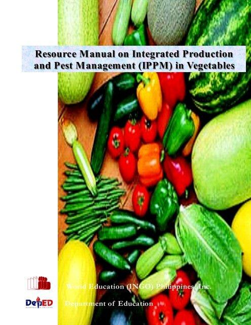 100 pcs japan mini cucumber Inorganic fruit vegetable seeds taste good quality F
