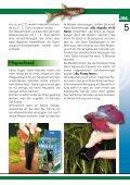 Das Nano-Aquarium - ZOO Buskohl - Seite 5