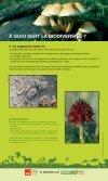 La biodiversité, un atout vital pour l'Europe - Kiagi.org - Page 5