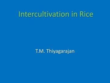 Session 7 - Tamil Nadu Agricultural University