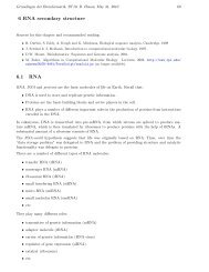 6 RNA secondary structure 6.1 RNA - Algorithms in Bioinformatics