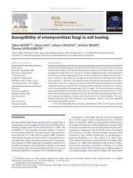 Susceptibility of ectomycorrhizal fungi to soil heating - WSL