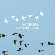 Informationsfolder om FG - Faaborg Gymnasium