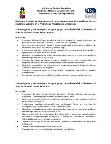 1 Investigador / docente para integrar grupo de trabajo básico ...