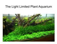 The Light Limited Plant Aquarium - Silicon Valley Aquarium Society