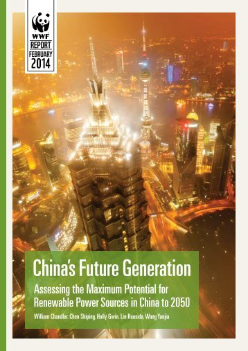 chinas_future_generation_report_final__1_