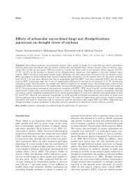 Effects of arbuscular mycorrhizal fungi and Bradyrhizobium ...