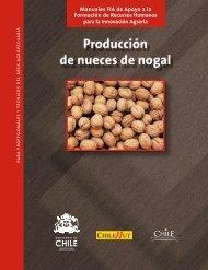 Producción de nueces de nogal