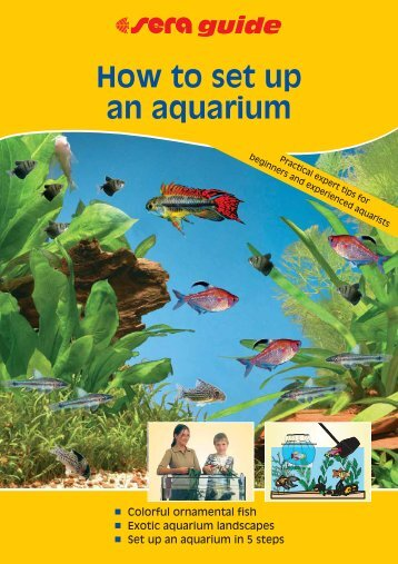 How to set up an aquarium - sera GmbH