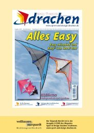 Hot Stripe - Space Kites