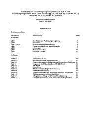 Geschäftsanweisung ausbild.begleit. Hilfen 07/2007 (pdf)