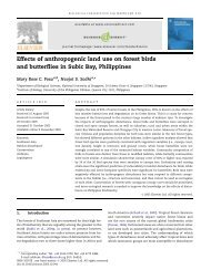 Effects of anthropogenic land use on forest birds and butterflies in ...