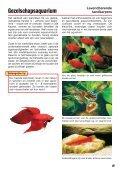 Zo richt ik mijn aquarium in - sera GmbH - Page 5