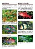 Zo richt ik mijn aquarium in - sera GmbH - Page 6