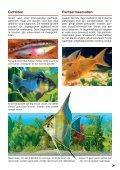 Zo richt ik mijn aquarium in - sera GmbH - Page 7