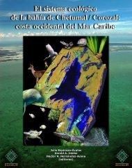 El Sistema Ecológico Bahía de Chetumal / Corozal: Costa ... - Treemail