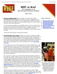 REEF-in-Brief - March 2005 - e-Newsletter of The Reef ...