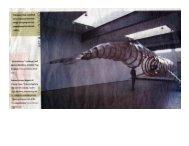 St. Louis Post Dispatch reviews 'Channelbone' in Art & Technology