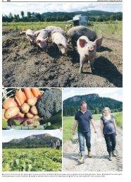 BØK Østlands-Posten – lørdag 30. juni 2012 18 1 Livet er bra for en ...