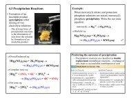4.3 Precipitation Reactions - Web Pages