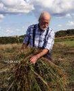 NORDISKE KØKKEN - Foreningen for Biodynamisk Jordbrug - Page 4
