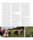 NORDISKE KØKKEN - Foreningen for Biodynamisk Jordbrug - Page 6