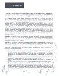 Acta de la Décimo Novena Sesión Consecutiva de la Comisión ...