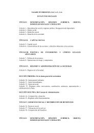 SASABE INVERSIONES, S - BNP Paribas